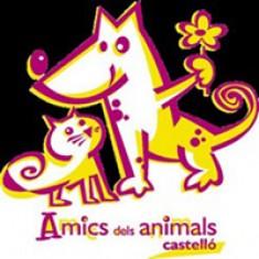 Esterilización de animales de ASPAC