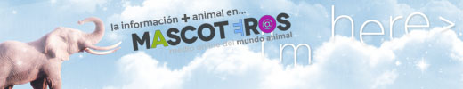 Banners-Mascoteros-520x100